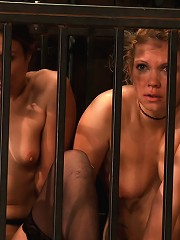 Amber Rayne, Rain Degrey, And Ariel X Part 4 Of 4 Of The October Live Show
